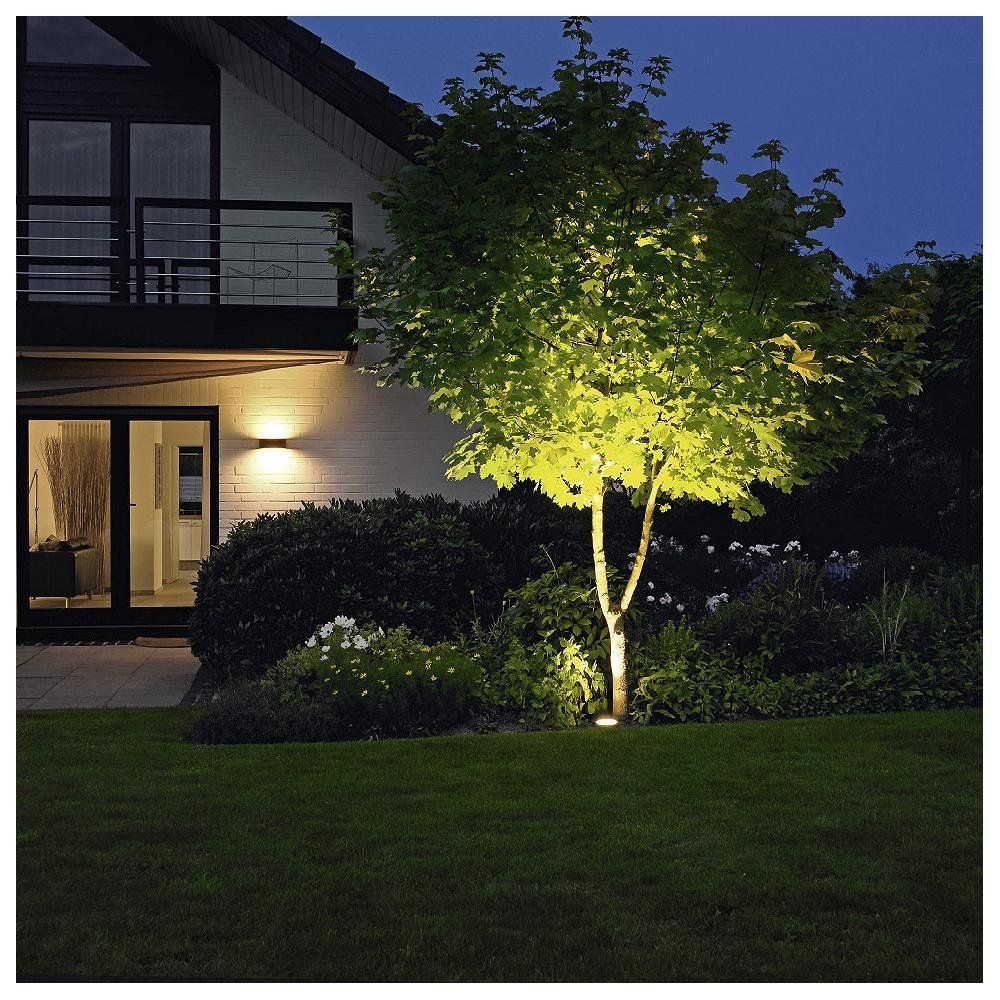 Outdoor Lighting Ideas 5 Ways To Light Your Outdoors At Lumens Com Outdoor Landscape Lighting Outdoor Tree Lighting Industrial Outdoor Lighting