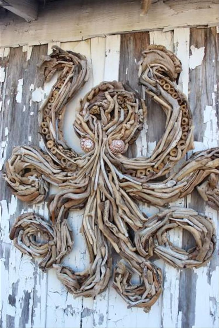 driftwood and seashells