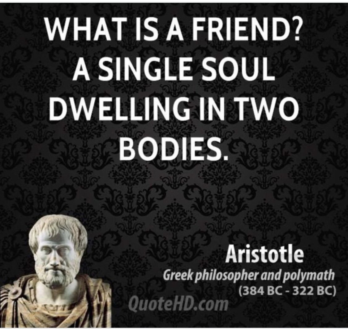 aristotle on friendship In fact, aristotle defines a genuine friendship in terms of the very factor missing in the case described above: loving the person for their own sake and acting to promote their good.