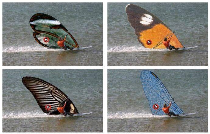 Hotsails Maui introducing their SuperFreak Butterfly Sail