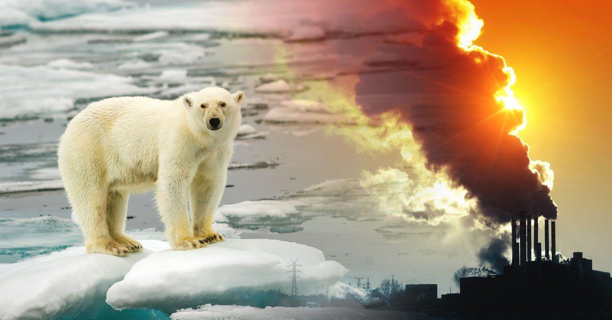 El Calentamiento Global Es Una Realidad Que Cada Día Nos Afecta Más En 2021 Calentamiento Global Causas Del Calentamiento Global Consecuencias Del Calentamiento Global