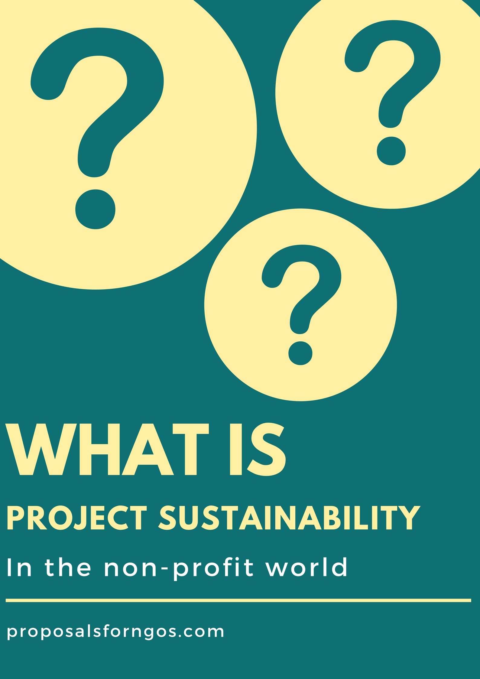 What Is Project Sustainability Proposalforngos Fundraising Strategies Proposal Writing Proposal
