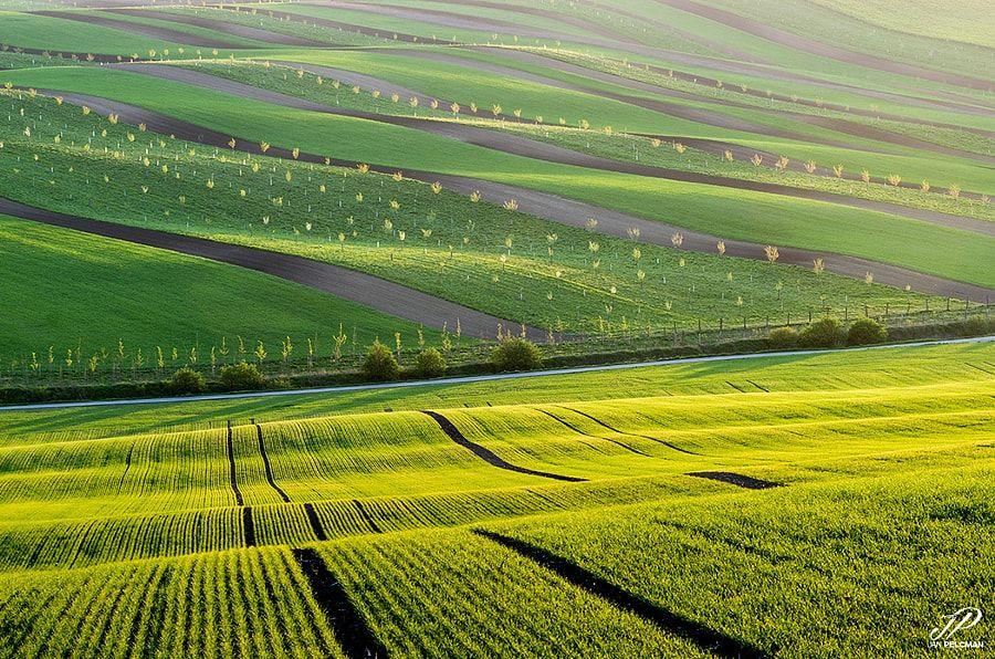 Stripes by Jan Pelcman - Photo 152266041 / 500px
