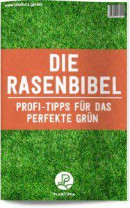 Rasen kostengünstig und ohne Umgraben erneuern? Das geht auch ohne Rollrasen! - Plantura #hortensienvermehren