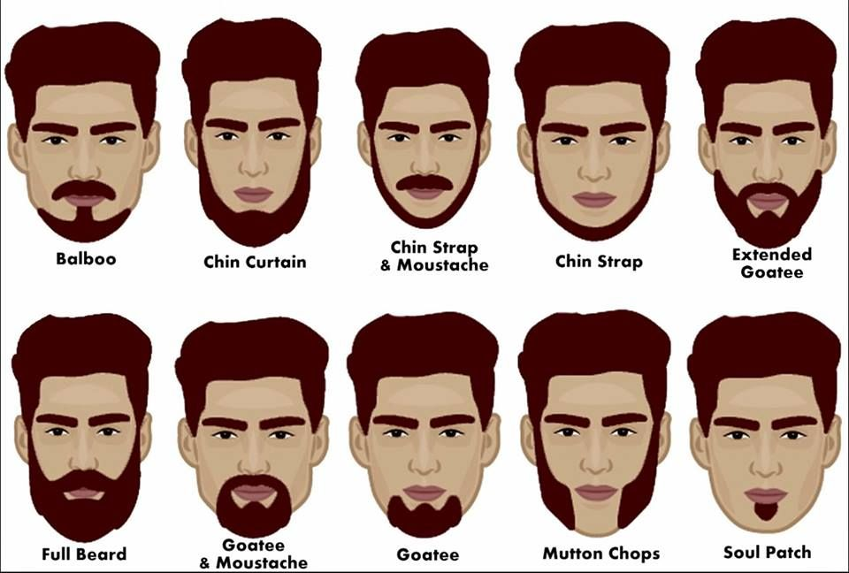 Things You Need To Know About Learn Vocabulary Face English Today English Study Now Mens Facial Hair Styles Beard Styles For Men Beard Styles