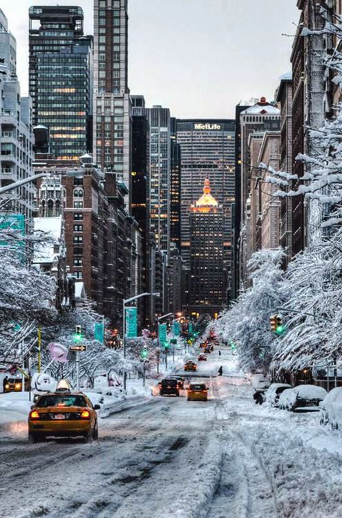 Winter Wonderland: Park Avenue, New York City.