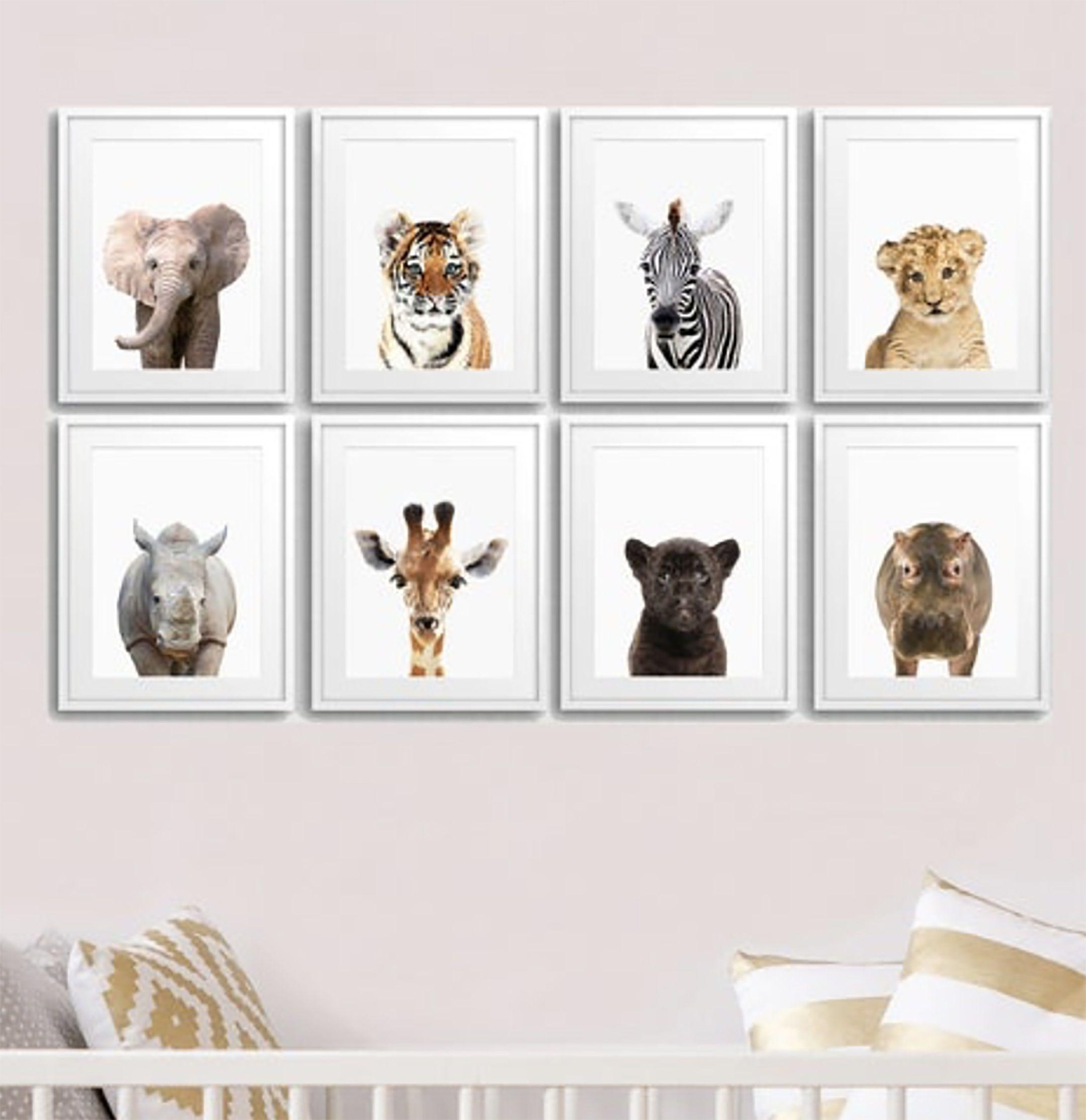 8 Set Of Safari Animal Prints Eight Piece Nursery Animal Wall Art Baby Animal Posters For Nursery Printable Kids Room Prints 057 Animal Wall Art Nursery Kids Room Prints Baby Wall Art