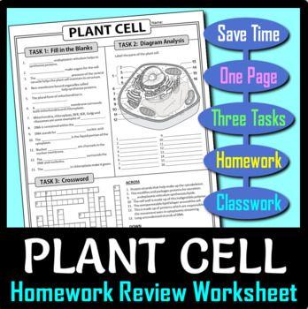 Plant Cell Homework Review Worksheet / Test Prep (Google ...