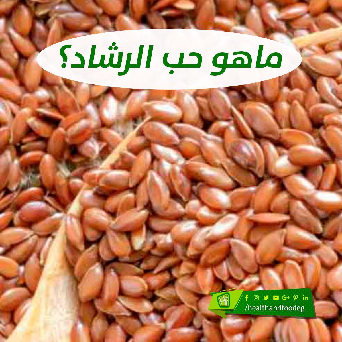 ماهو حب الرشاد Vegetables Food Beans