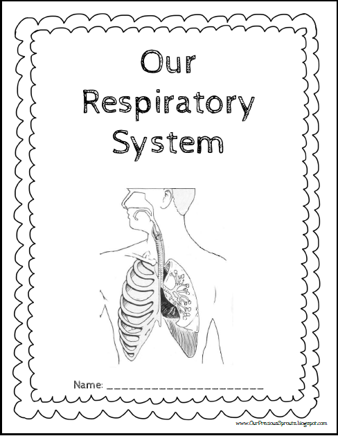 Our Precious Sprouts' Homeschool Journal: Our Respiratory
