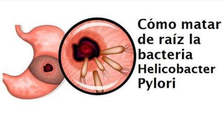 Cual es el tratamiento para eliminar helicobacter pylori