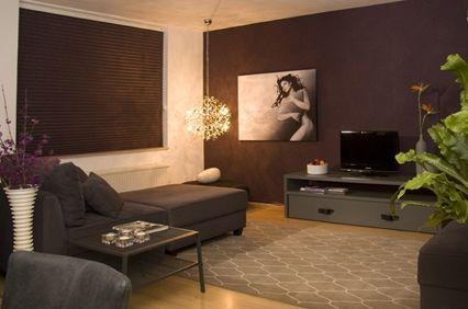 Aardetinten woonkamer google zoeken woonkamer kleur for Bruin grijs interieur