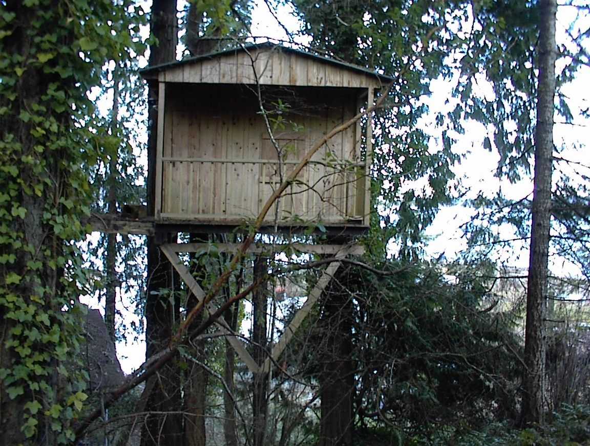 Old tree house treehouse pinned by for Treeless treehouse