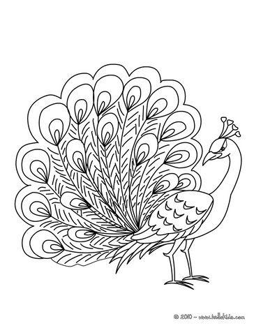 Desenho de um Pav o deslumbrante para colorir online | desenhos ...