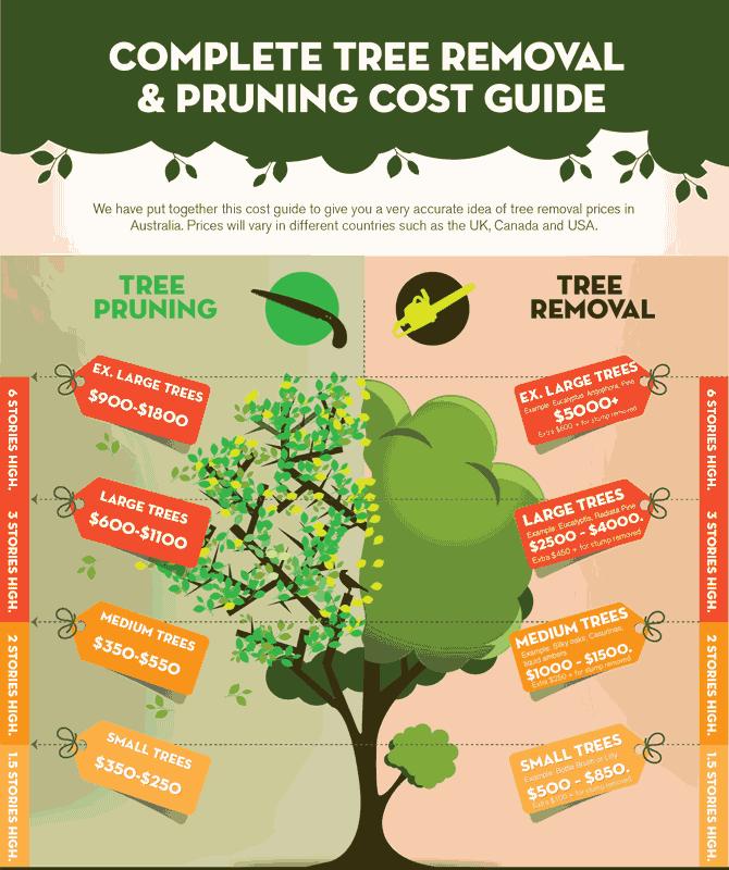 Pin On Tree Service