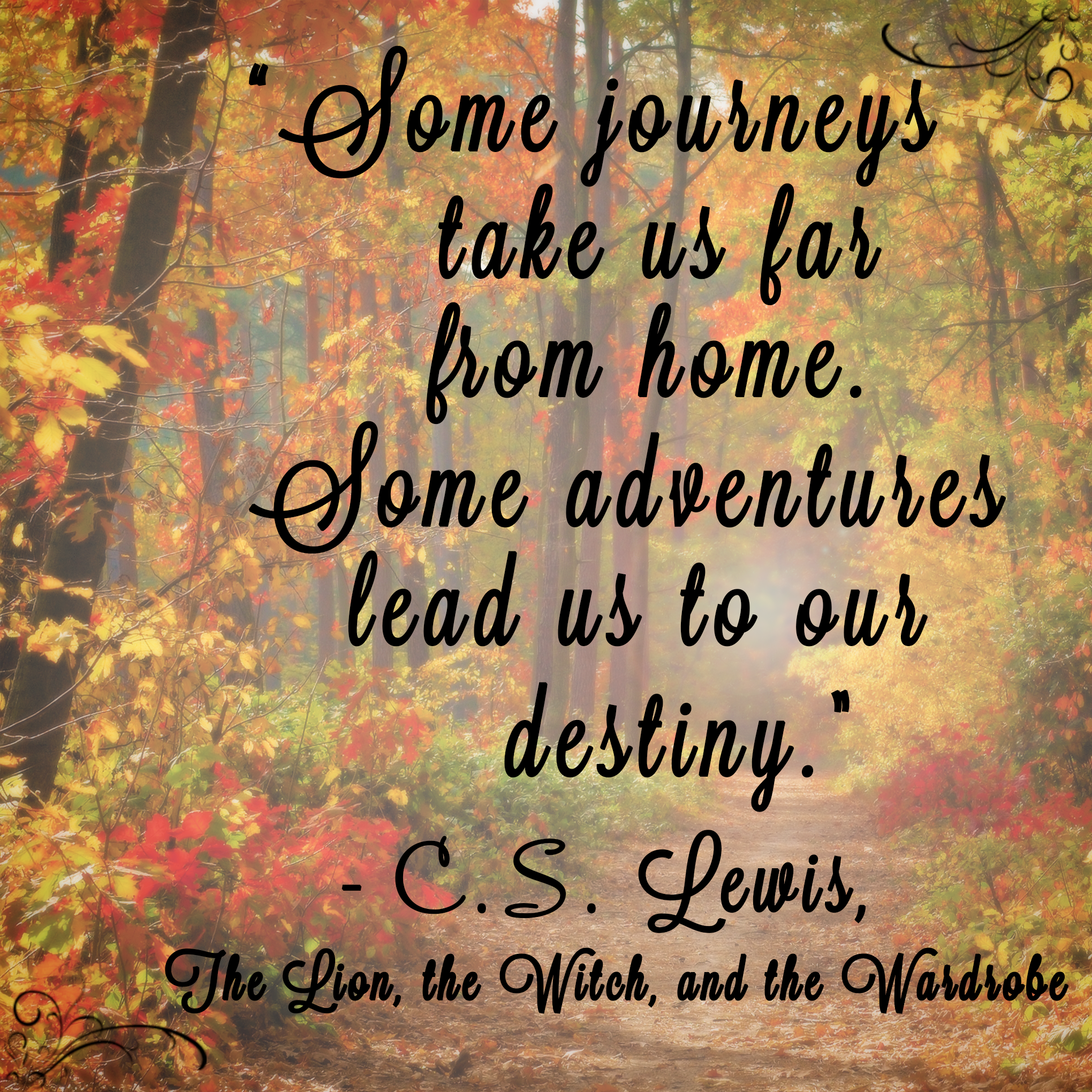 """""""Some journeys take us far from home. Some adventures lead us to our destiny."""" -C.S. Lewis  #thelionthewitchandthewardrobe #CSLewis #Narnia"""