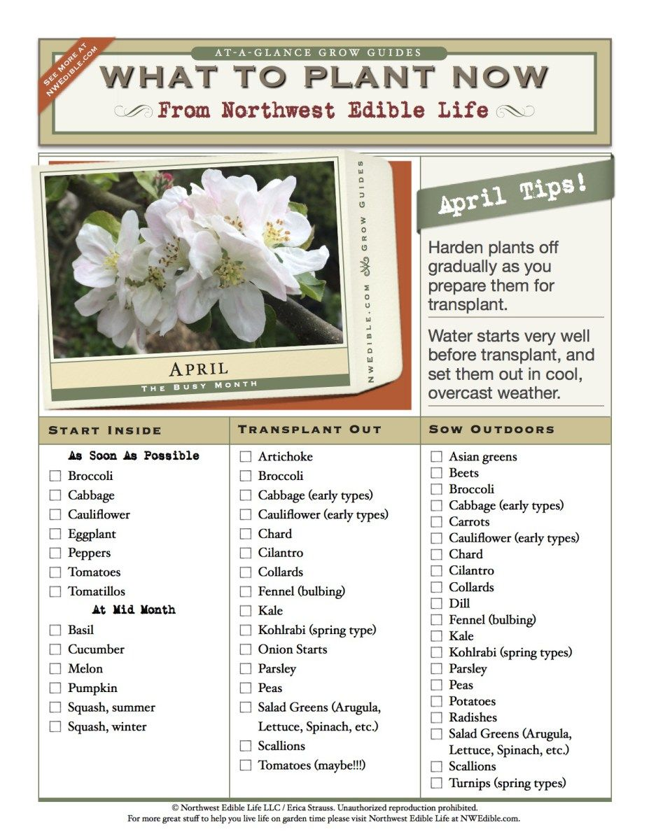 April Gardening Chores For The Pacific Northwest April Gardening Northwest Garden Edible Garden