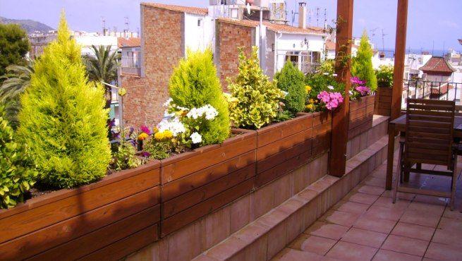 cultivo de plantas en jardineras - Jardineras Exterior