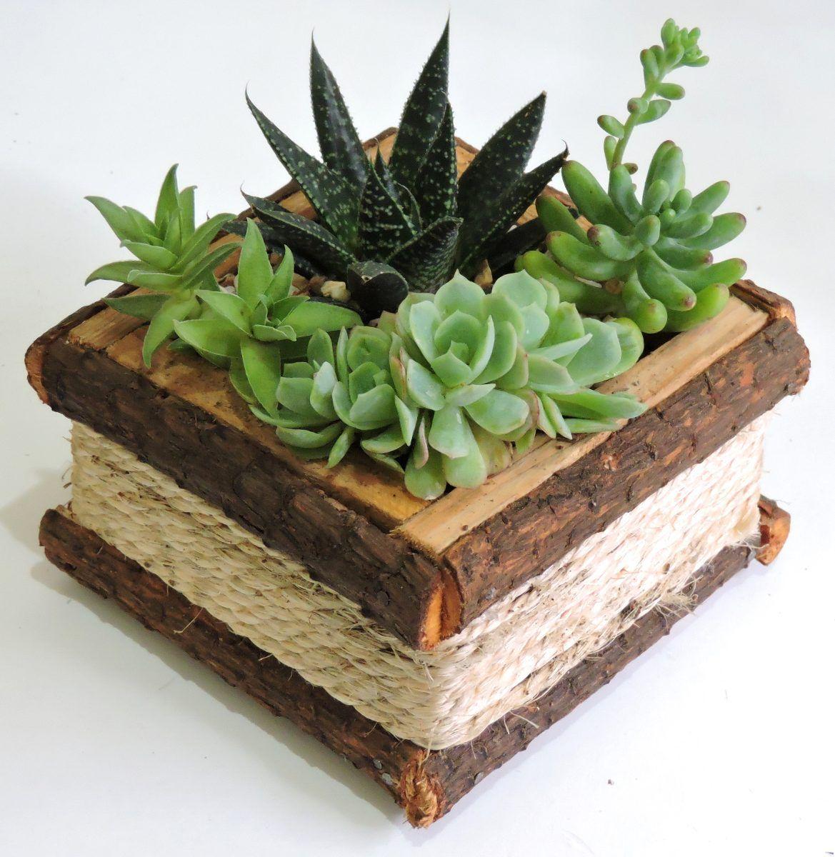 Centro de mesa plantas naturales recuerdo toda ocasi n - Centros de mesa naturales ...
