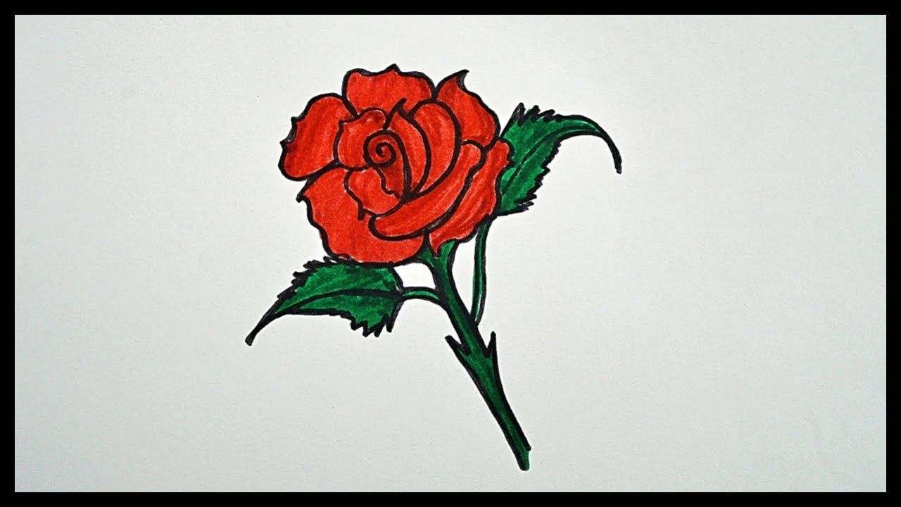 How To Draw A Rose Drawing For Kids Coloring For Kids Drawing For Kids Rose Drawing Coloring For Kids