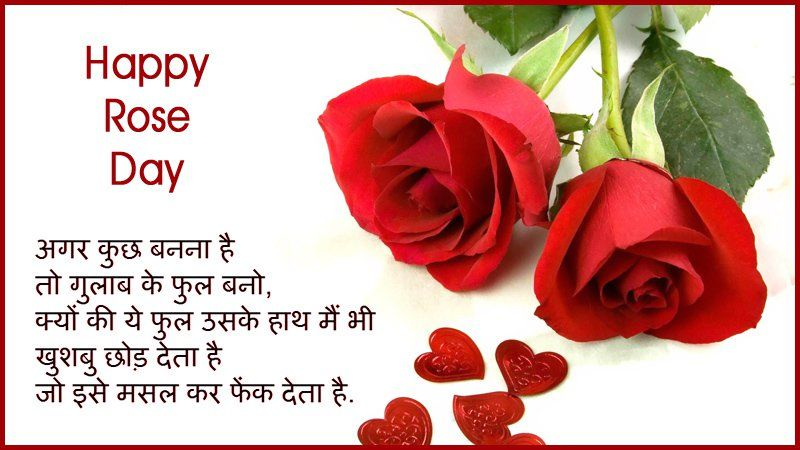 Happy Rose Day Images Wallpaper Gifs Rose Day Greeting