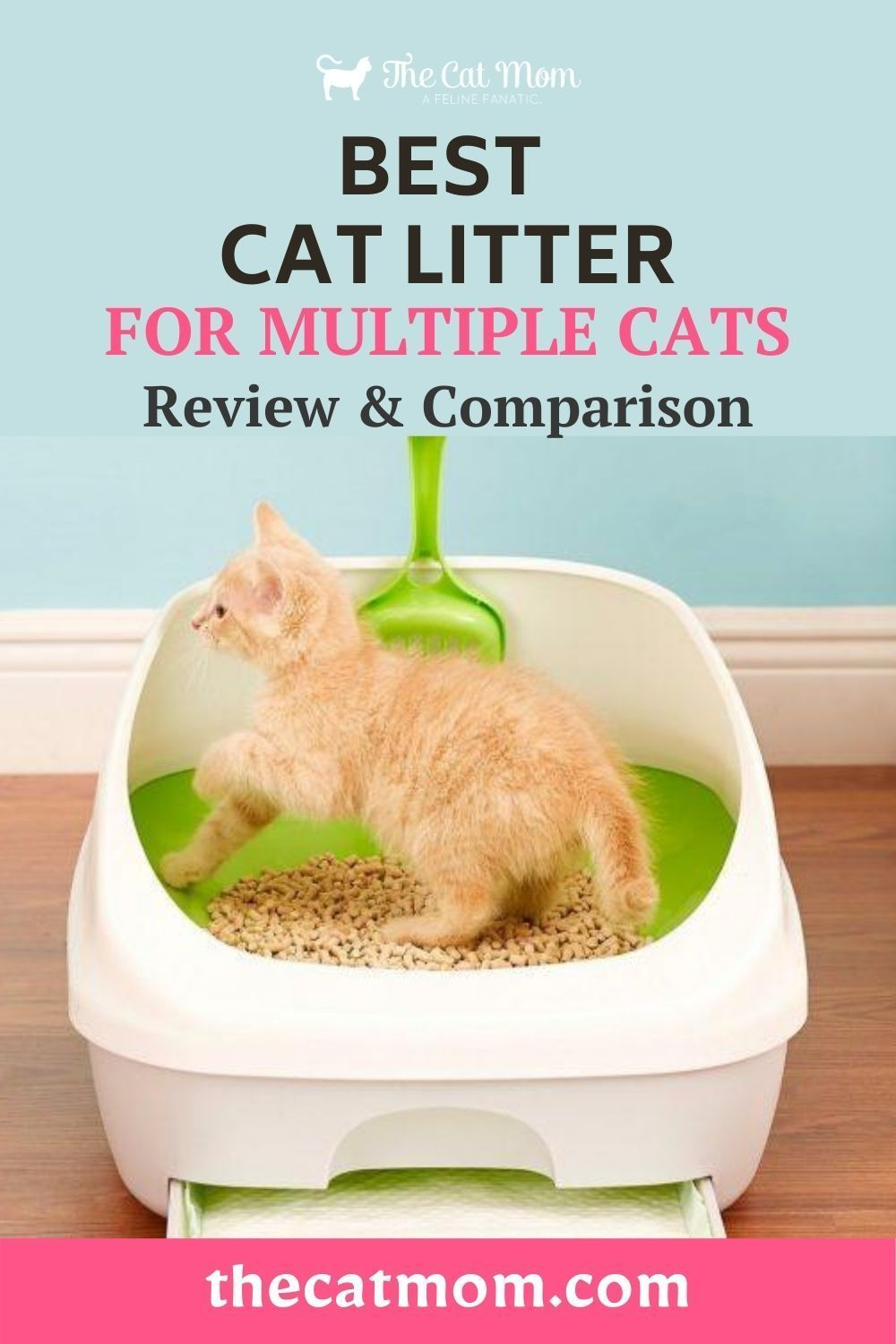 The Best Cat Litter for Multiple Cats Review & Comparison