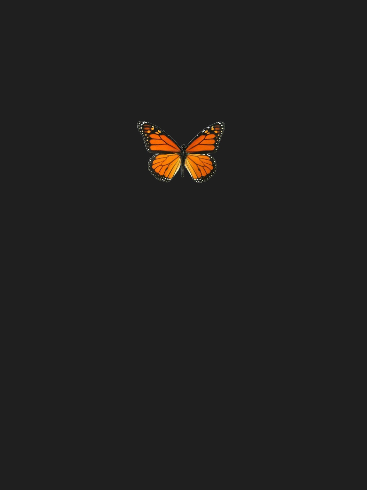 Butterfly Tumblr In 2020 Butterfly Wallpaper Iphone Iphone Wallpaper Vsco Aesthetic Iphone Wallpaper