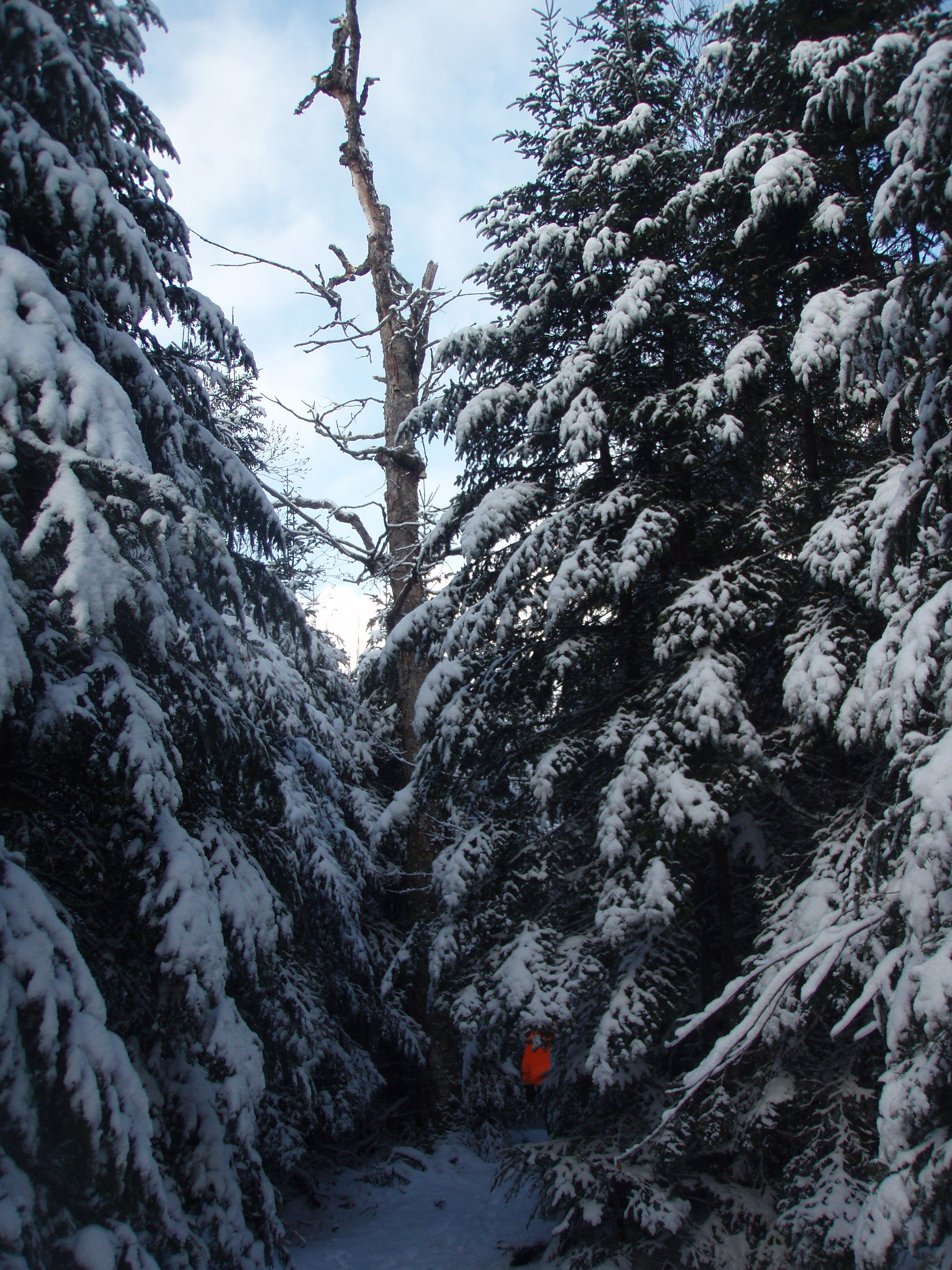 winter hiking in Maine   Grand canyon camping, Camping in ...