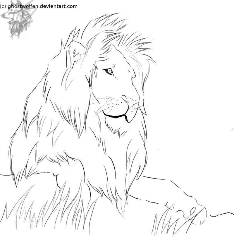 Line Art Of Lion : Realism lion line art tattoo design drawing