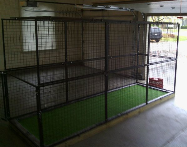 This Year, We Installed An Indoor Dog Run .