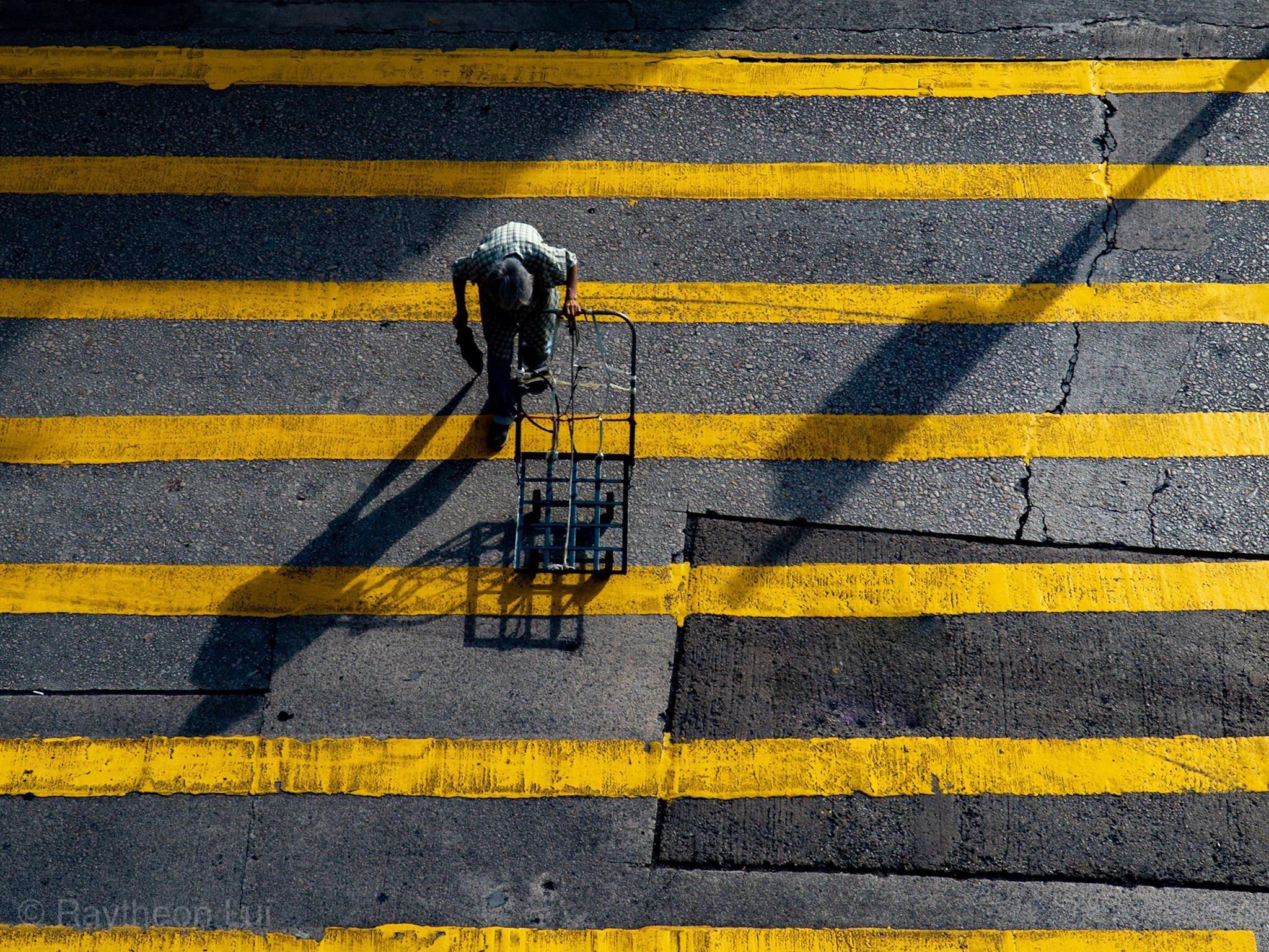 Work Companion #streetphotography #photography