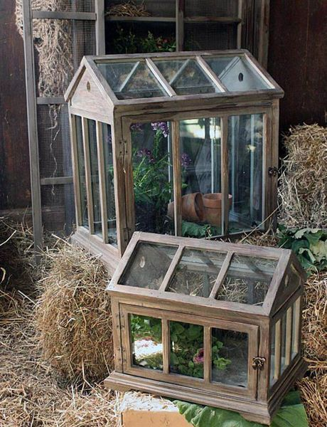 Peacock Park Designs greenhouse sets to start seedlings or display a  treasure - Dollhouse Miniature Shabby Chic Victorian Large Terrarium