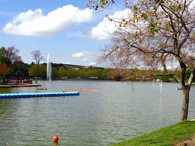 Lago de la Casa de Campo | Mi cámara y yo (Mis Fotos) | Pinterest ...