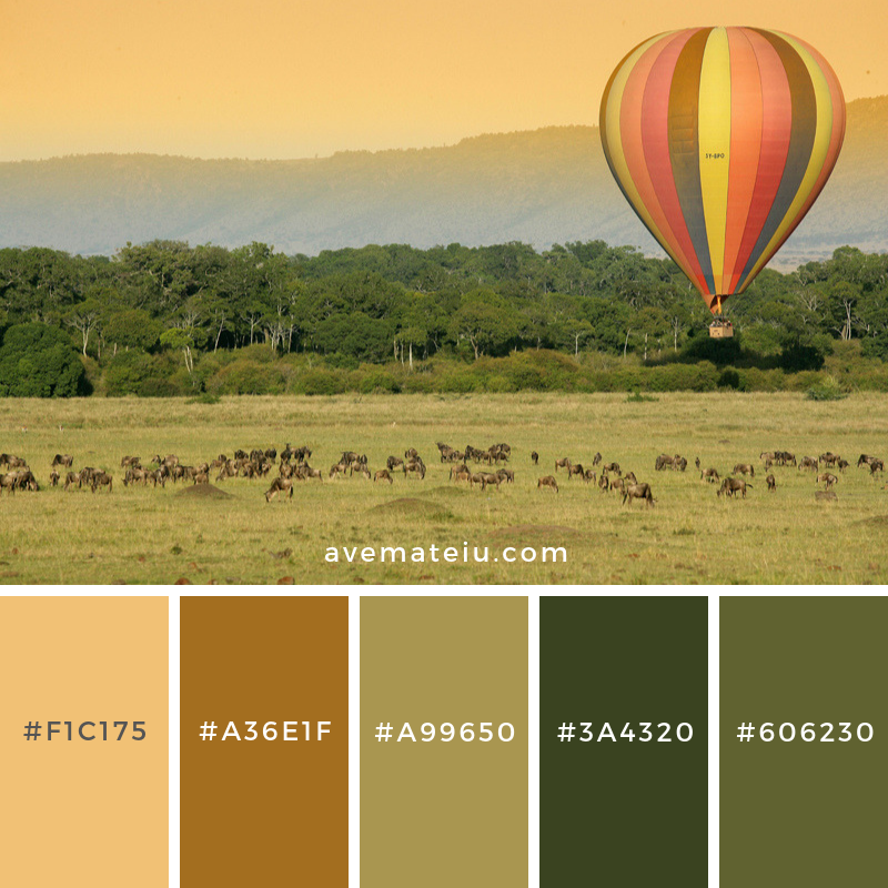 Warm Bedroom Color Schemes: Eastern & Southern Africa: Top 10 Must Do's