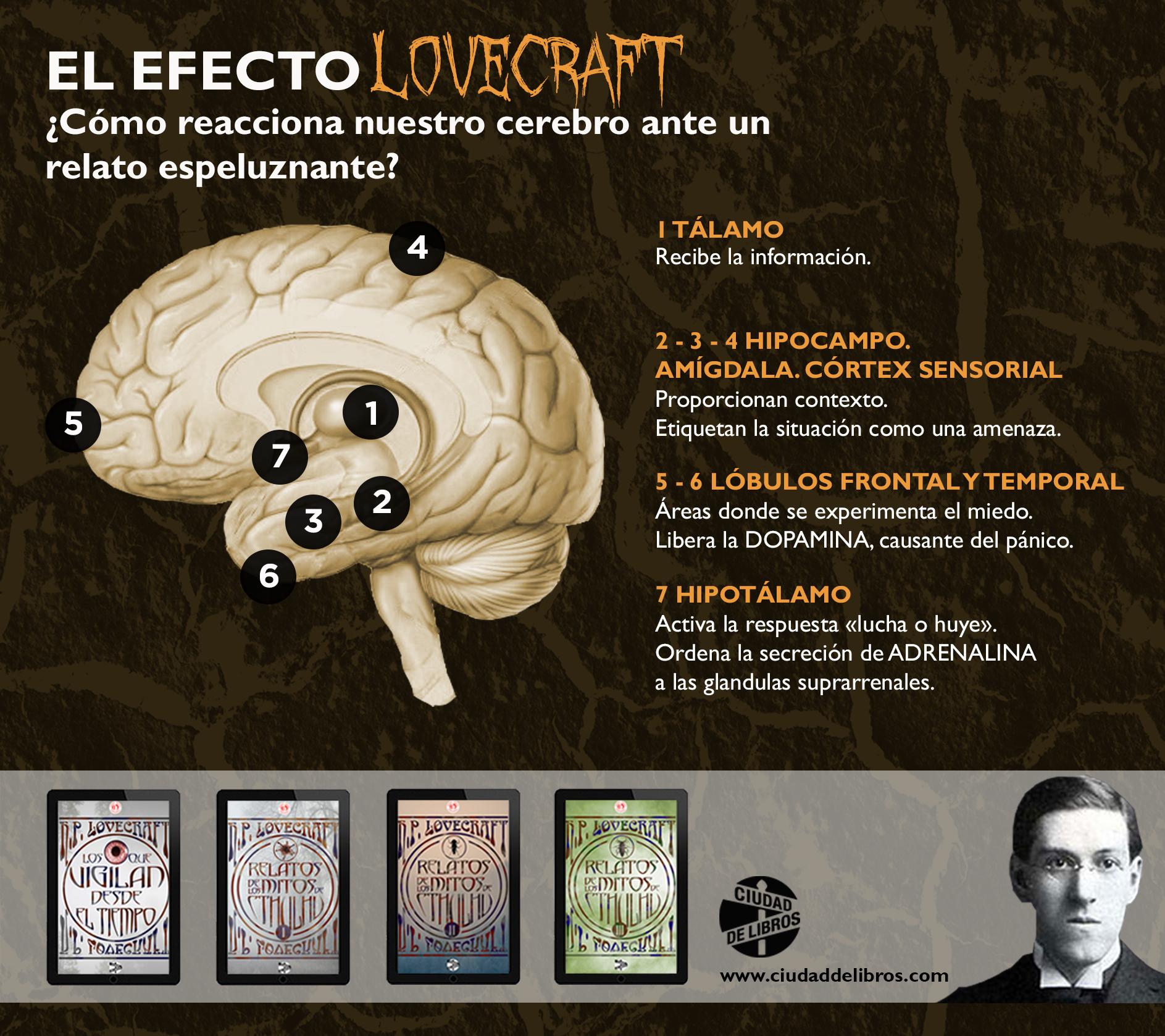 Pin de Ciudad de Libros en Nuestras infografías | Pinterest ...