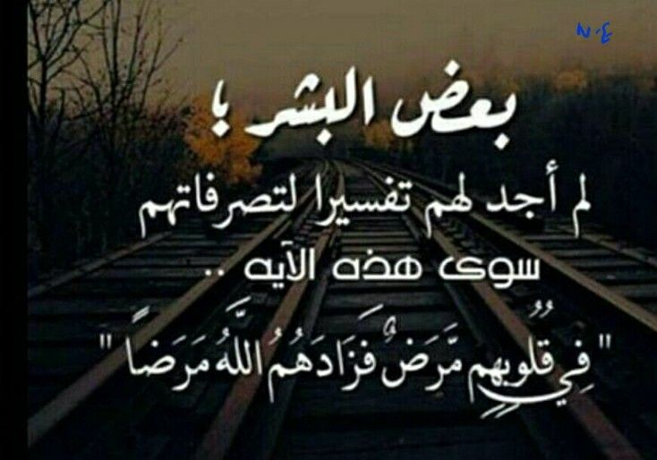 ناس مريضة Words Quotes Arabic Quotes Short Quotes Love