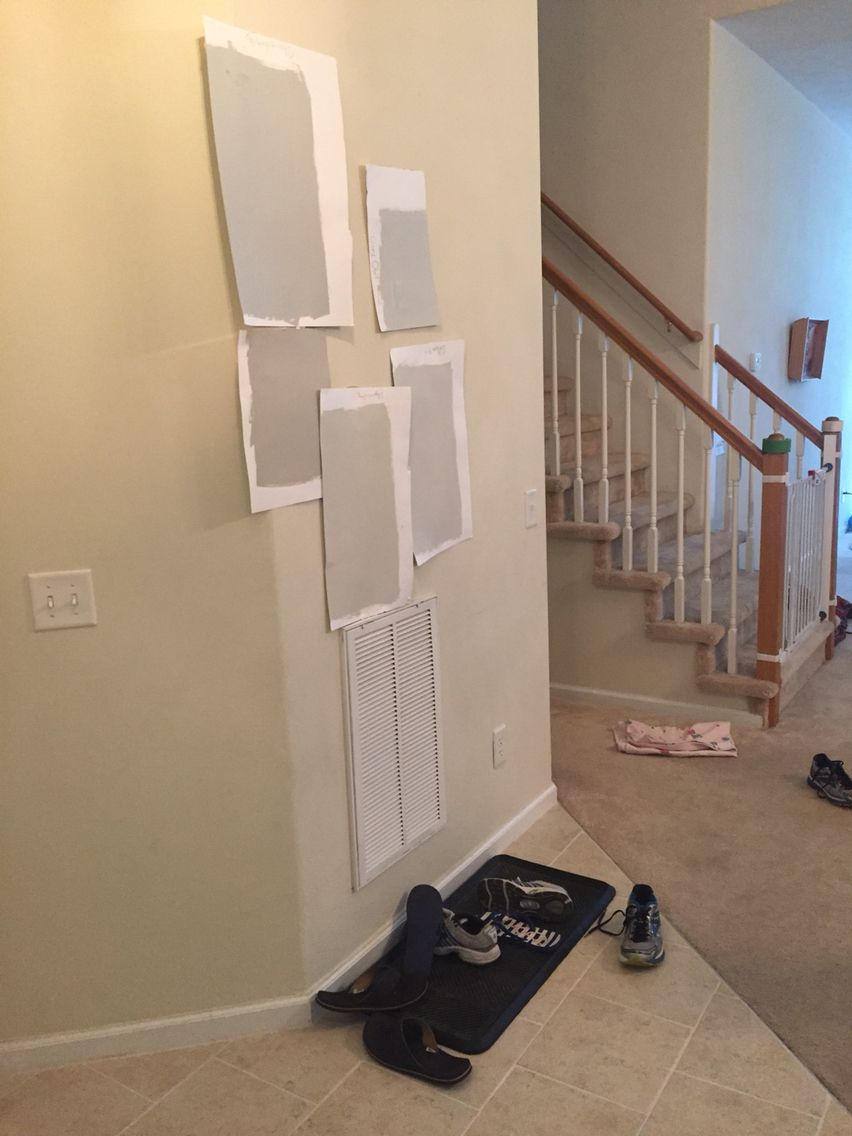 Benjamin Moore from top right going clockwise gray owl VS ...