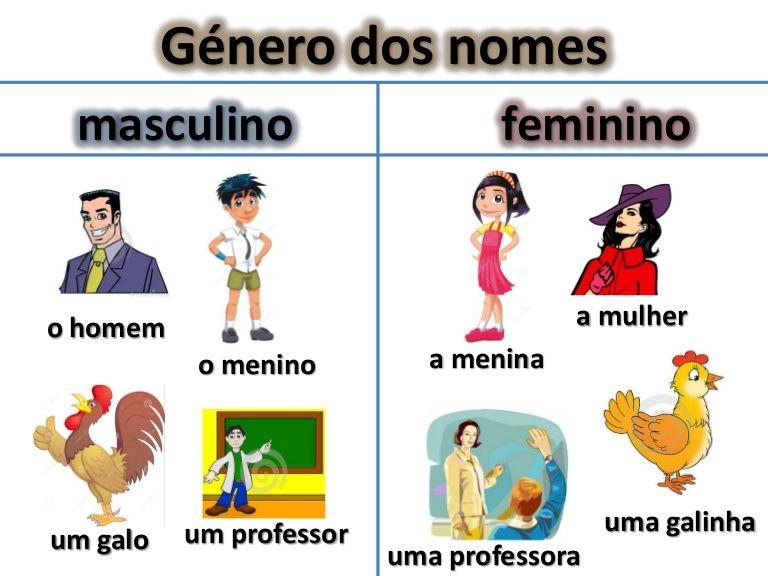 Género dos nomes masculino feminino a mulher o homem o menino um galo um professor a menina uma galinha uma professora