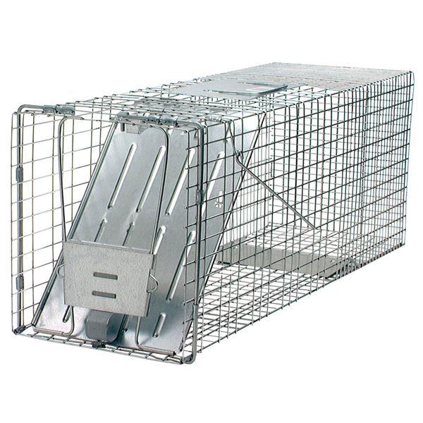 Havahart 32x10x12 Raccoon Trap Single Door | Single doors, Armadillo ...