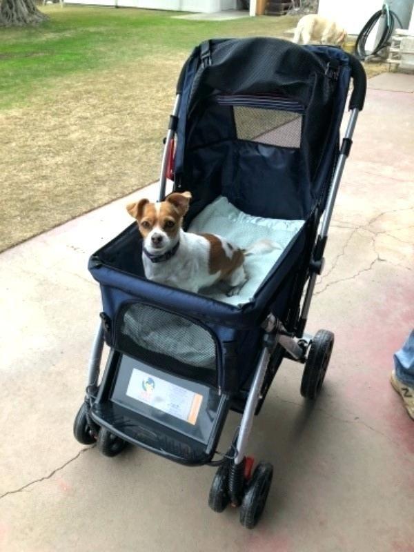 Kinderwagen Hund