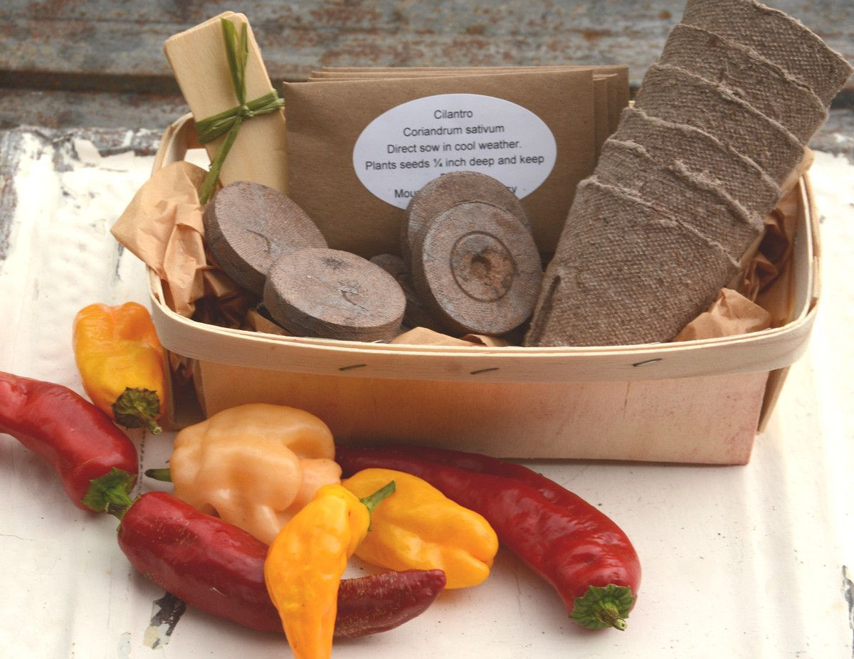 Salsa Garden Seed Kit Heirloom Vegetable Seeds To Grow Your Own ...