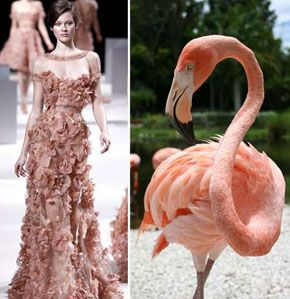Fashion Inspired By Animals And Insects Animal Fashion Fashion Inspiration Design Bird Fashion