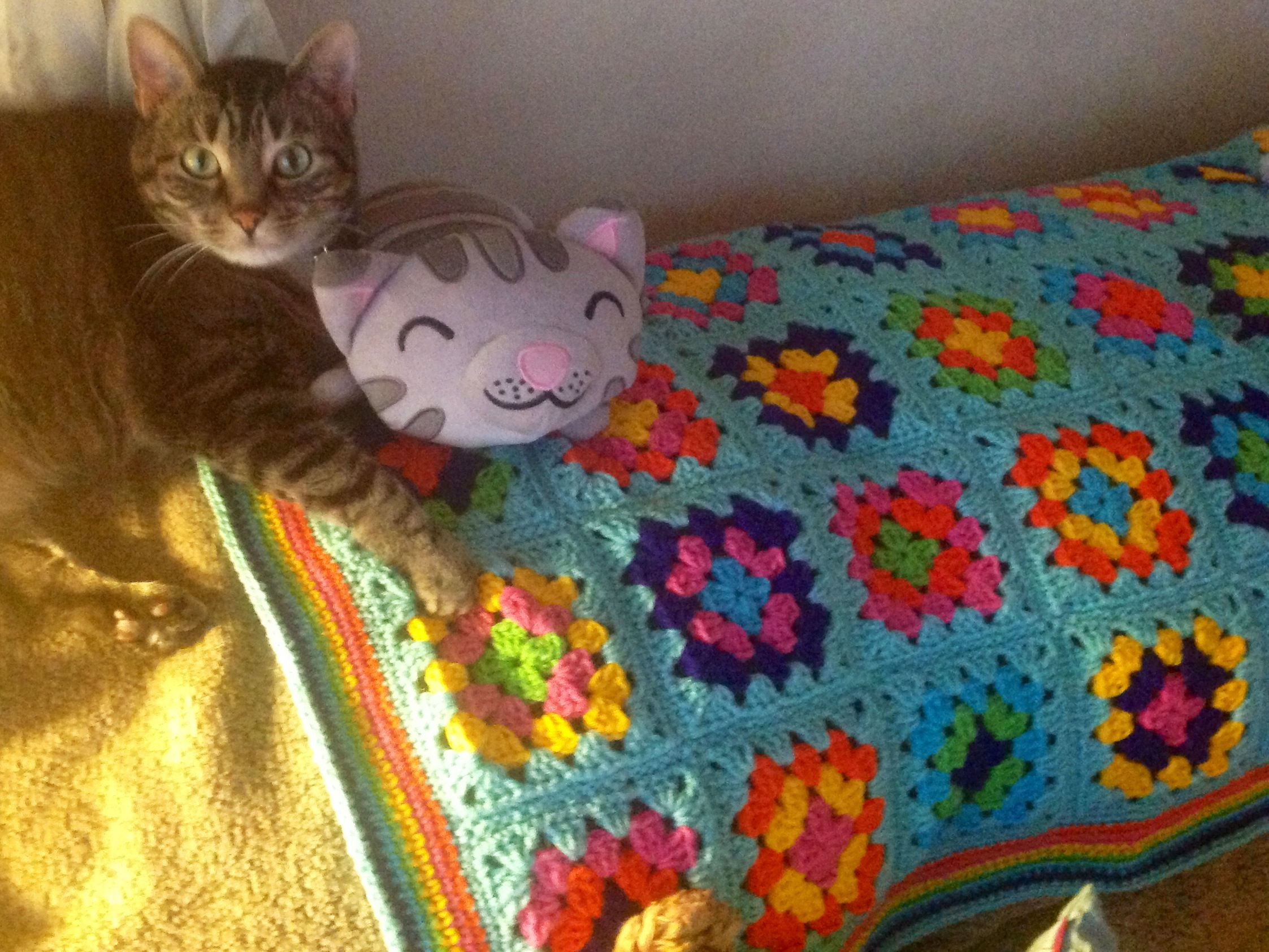 Mr. Bojangles loves to lay on crocheted afghans.