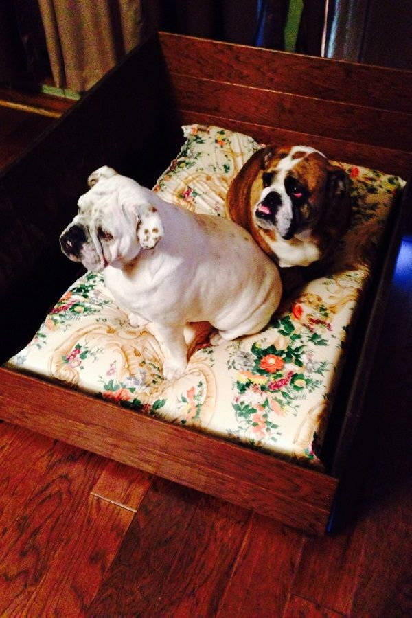 Awesome Diy Dog Bad Project Made From Leftover Hardwood Flooring From Findmats Com Flooring Projects Flooring Hardwood