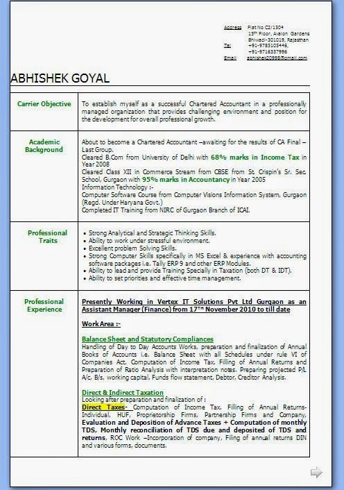 Curriculum Vitae Exemple Sample Template Example Of