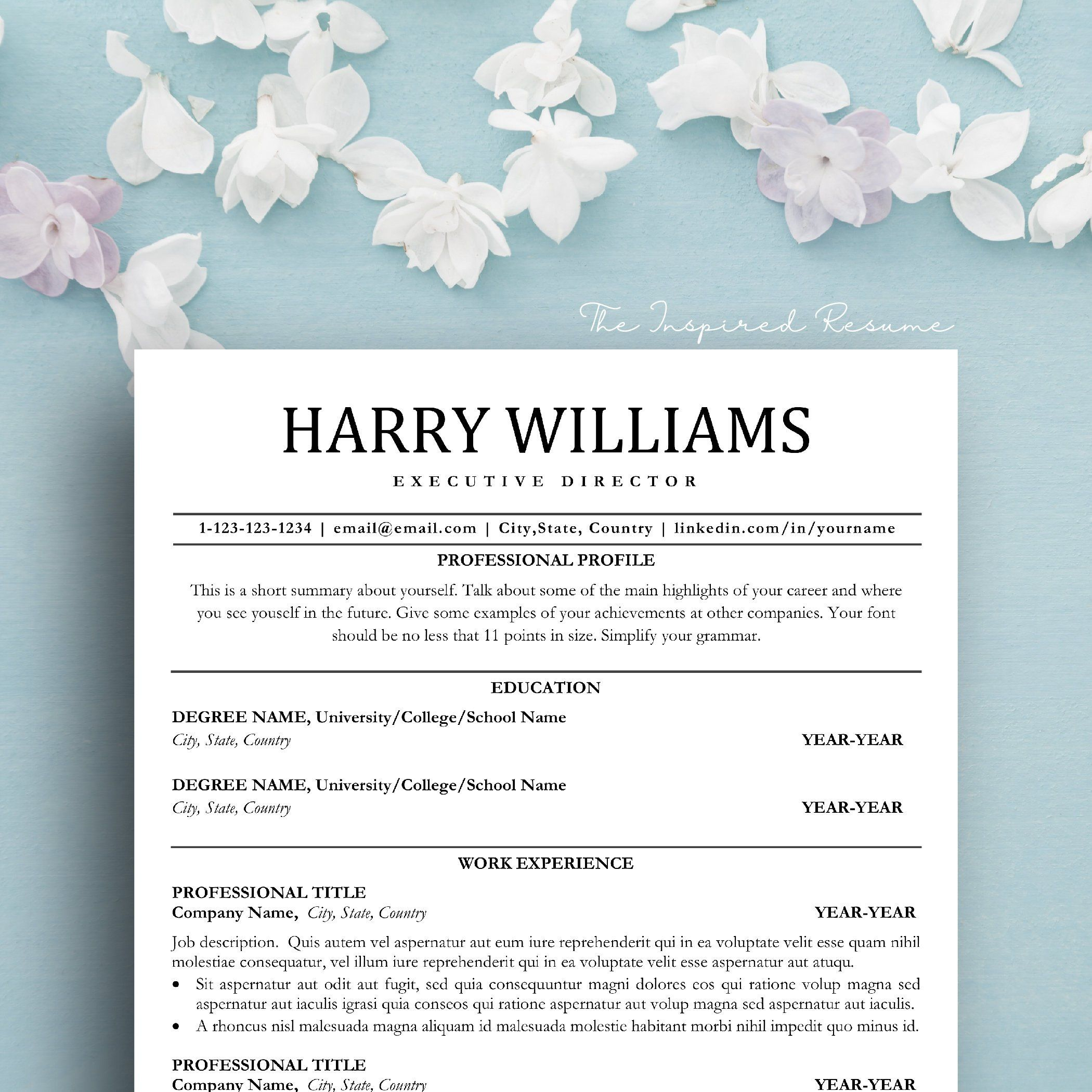 ceo resume template word free
