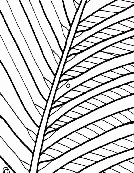Palm tree coloring page beach art digital by