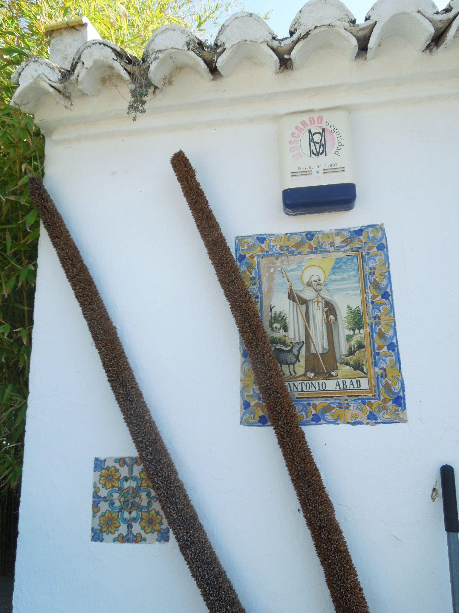 Xàtiva el Palasiet, paneles ceramicos y de Sant Antoní Abad. Por JMBM