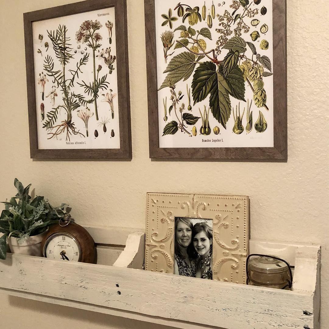 Stylish DIY Floating Shelves & Wall Shelves (Easy