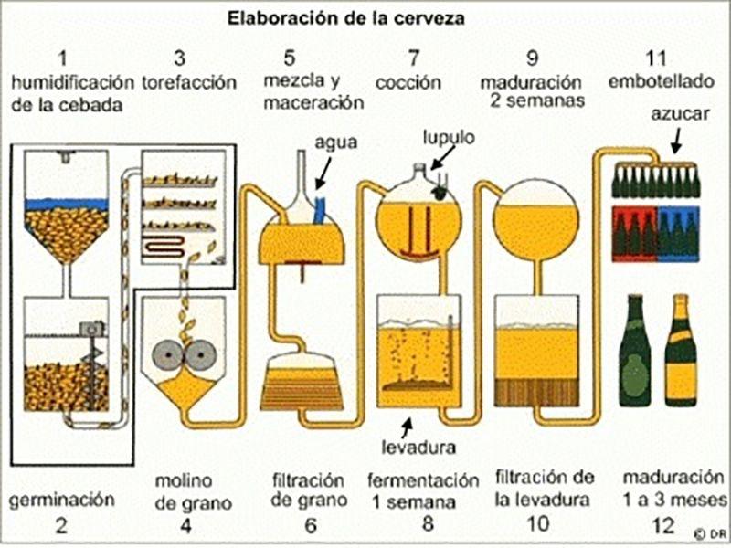 Proceso de producci n de cerveza beer en 2018 Proceso de produccion en un restaurante